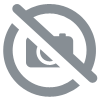 Cromoptic 2% Collyre 10 ml